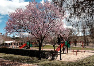 Parque Juan Pablo II 02