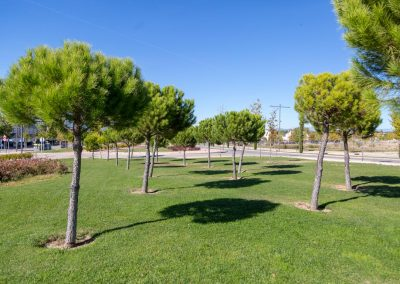 Parque Quique Camoiras 02