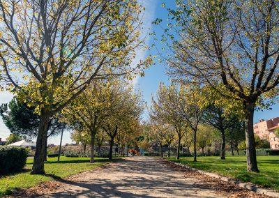 Parque Azorín
