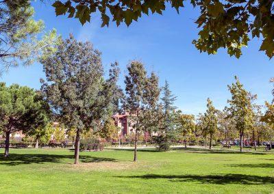 Parque Gregorio Marañón