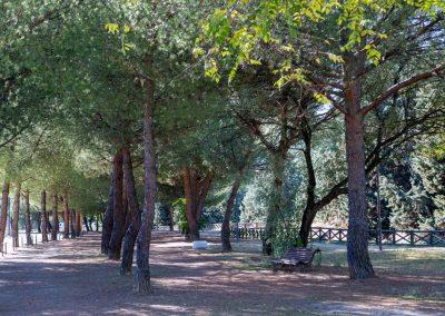 Parque de Antonio Herrero 04