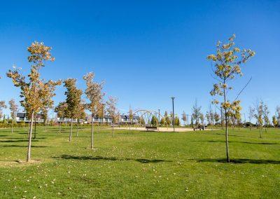 Parque Quique Camoiras 05