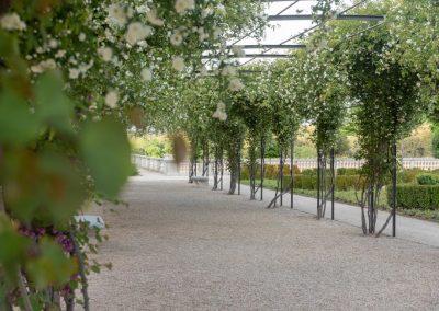 Jardines del Palacio del Infante Don Luis 05